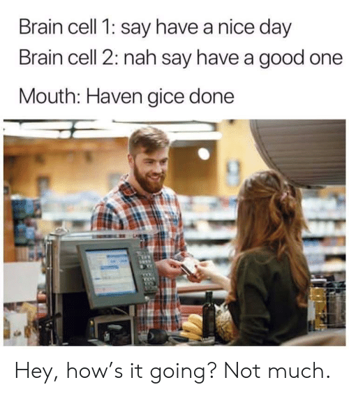 nice-day: Brain cell 1: say have a nice day  Brain cell 2: nah say have a good one  Mouth: Haven gice done Hey, how's it going? Not much.
