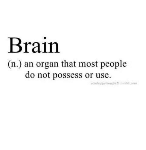Tumblr, Brain, and Com: Brain  (n.) an organ that most people  do not possess or use.  yourhappythonght21 tumblr.com