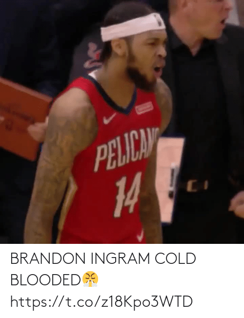 cold blooded: BRANDON INGRAM COLD BLOODED😤 https://t.co/z18Kpo3WTD