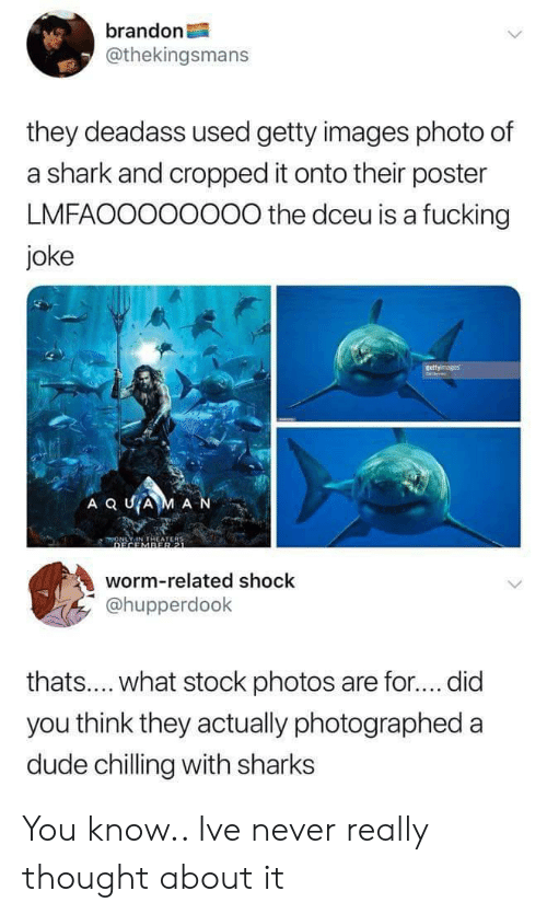 Fucking Joke: brandon  @thekingsmans  they deadass used getty images photo of  a shark and cropped it onto their poster  LMFAOOO00000 the dceu is a fucking  joke  worm-related shock  @hupperdook  thats.... what stock photos are for.... did  you think they actually photographed a  dude chilling with sharks You know.. Ive never really thought about it