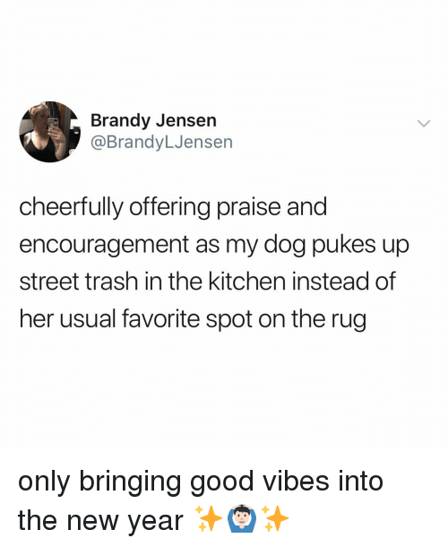 Memes, New Year's, and Trash: Brandy Jensen  @BrandyLJensen  cheerfully offering prai  encouragement as my dog pukes up  street trash in the kitchen instead of  her usual favorite spot on the rug  se and only bringing good vibes into the new year ✨🙆🏻♂️✨