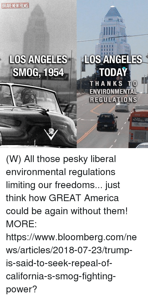 smog: BRAVE NEW FILMS  HI  IL  LOS ANGELES  SMOG,1954  LOS ANGELES  TODAY  THANKS T  ENVIRONMENTAL  REGULATIONS (W) All those pesky liberal environmental regulations limiting our freedoms... just think how GREAT America could be again without them! MORE: https://www.bloomberg.com/news/articles/2018-07-23/trump-is-said-to-seek-repeal-of-california-s-smog-fighting-power?