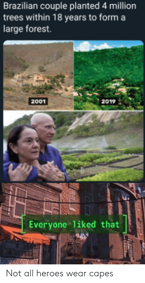 Heroes, Trees, and Brazilian: Brazilian couple planted 4 million  trees within 18 years to form a  large forest.  2001  2019  Everyone liked that Not all heroes wear capes