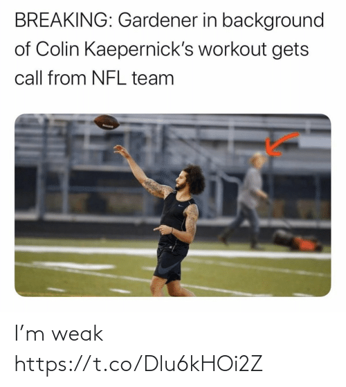 Football, Nfl, and Sports: BREAKING: Gardener in background  of Colin Kaepernick's workout gets  call from NFL team I'm weak https://t.co/Dlu6kHOi2Z
