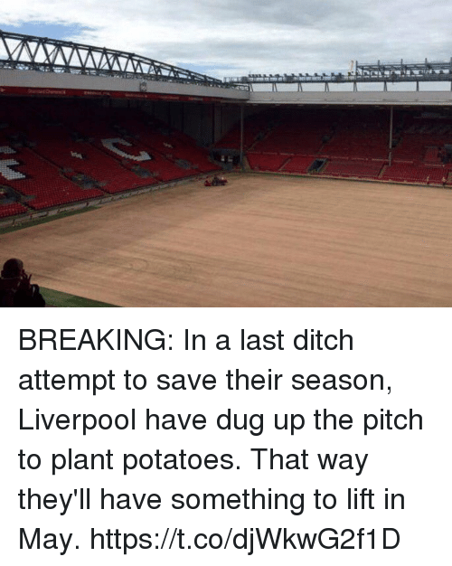 Soccer, Liverpool F.C., and Lift: BREAKING: In a last ditch attempt to save their season, Liverpool have dug up the pitch to plant potatoes. That way they'll have something to lift in May. https://t.co/djWkwG2f1D