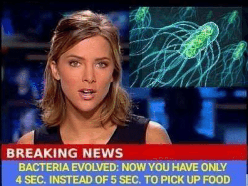 Food, Memes, and News: BREAKING NEWS  BACTERIA EVOLVED: NOW YOU HAVE ONLY  4 SEC. INSTEAD OF 5 SEC. TO PICK UP FOOD