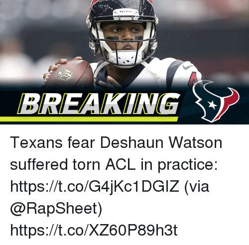 Memes, Texans, and Fear: BREAKING Texans fear Deshaun Watson suffered torn ACL in practice: https://t.co/G4jKc1DGIZ (via @RapSheet) https://t.co/XZ60P89h3t