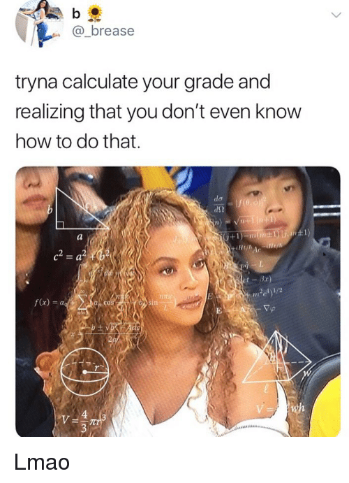 Lmao, Memes, and How To: @_brease  tryna calculate your grade and  realizing that you don't even know  how to do that.  dS2  f(x)- a  an co  VA Lmao