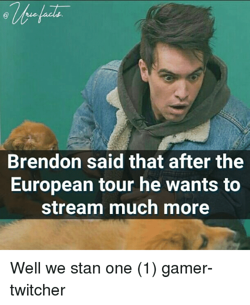 Memes, Stan, and 🤖: Brendon said that after the  European tour he wants to  stream much more Well we stan one (1) gamer-twitcher