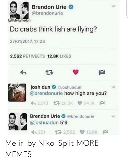 Dank, How High, and Memes: Brendon Urie  @brendonurie  g&dalightedun  Do crabs think fish are flying?  27/01/2017, 17:23  2,562 RETWEETS 12.8K LIKES  josh dun@joshuadun  @brendonurie how high are you?  2.513 203K  64.1K  Brendon Urie @brendonurie  @joshuadun 5'9  12 aK  t32,562  251 Me irl by Niko_Split MORE MEMES
