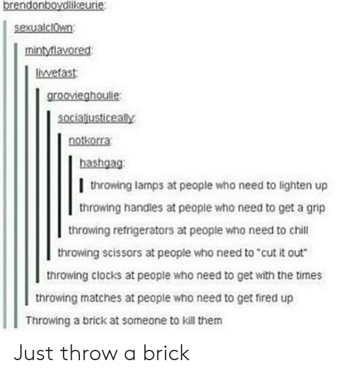"Chill, Who, and Brick: brendonboydlikeurie:  sexualclwn  mintylavored  liwetast  groovieghoulie:  socialjusticeally  notkorra  hashgag:  l throwing lamps at people who need to lighten up  throwing handles at people who need to get a grip  throwing refrigerators at people who need to chill  throwing scissors at people who need to""cut it out  throwing clocks at people who need to get with the times  throwing matches at people who need to get fired up  Throwing a brick at someone to kill them Just throw a brick"