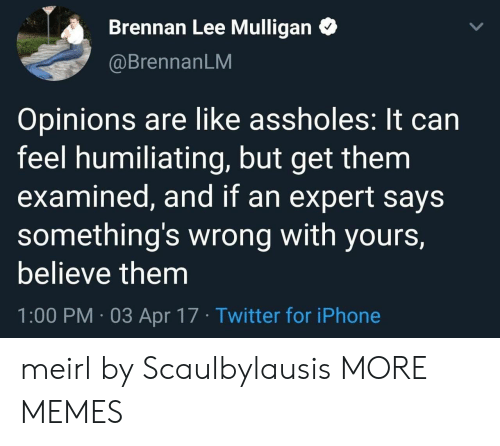 Dank, Iphone, and Memes: Brennan Lee Mulligan  @BrennanLM  Opinions are like assholes: It can  feel humiliating, but get them  examined, and if an expert says  something's wrong with yours,  believe them  1:00 PM 03 Apr 17 Twitter for iPhone meirl by Scaulbylausis MORE MEMES