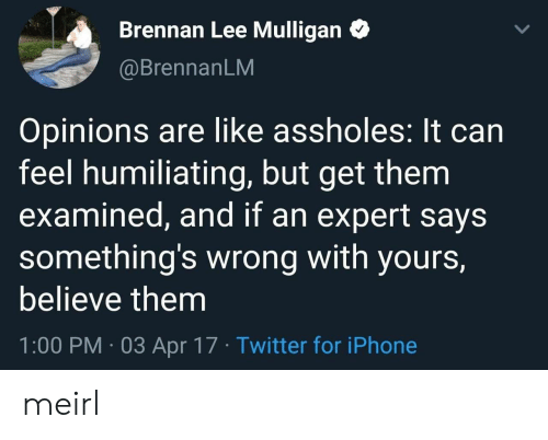 Iphone, Twitter, and MeIRL: Brennan Lee Mulligan  @BrennanLM  Opinions are like assholes: It can  feel humiliating, but get them  examined, and if an expert says  something's wrong with yours,  believe them  1:00 PM 03 Apr 17 Twitter for iPhone meirl