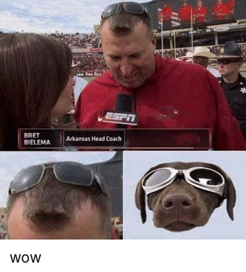 Head, Memes, and Wow: BRET  BIELEMA  Arkansas Head Coach wow