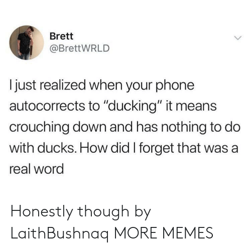 "Dank, Memes, and Phone: Brett  @BrettWRLD  I just realized when your phone  autocorrects to ""ducking"" it means  crouching down and has nothing to do  with ducks. How did I forget that was a  real word Honestly though by LaithBushnaq MORE MEMES"