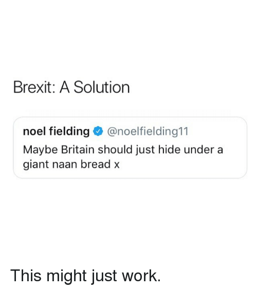 Memes, Work, and Giant: Brexit: A Solution  noel fielding@noelfielding11  Maybe Britain should just hide under a  giant naan bread x This might just work.