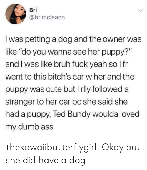 "But She: Bri  @brimcleann  I was petting a dog and the owner was  like ""do you wanna see her puppy?""  and I was like bruh fuck yeah so I fr  went to this bitch's car w her and the  puppy was cute but I rlly followed a  stranger to her car bc she said she  had a puppy, Ted Bundy woulda loved  my dumb ass thekawaiibutterflygirl:  Okay but she did have a dog"