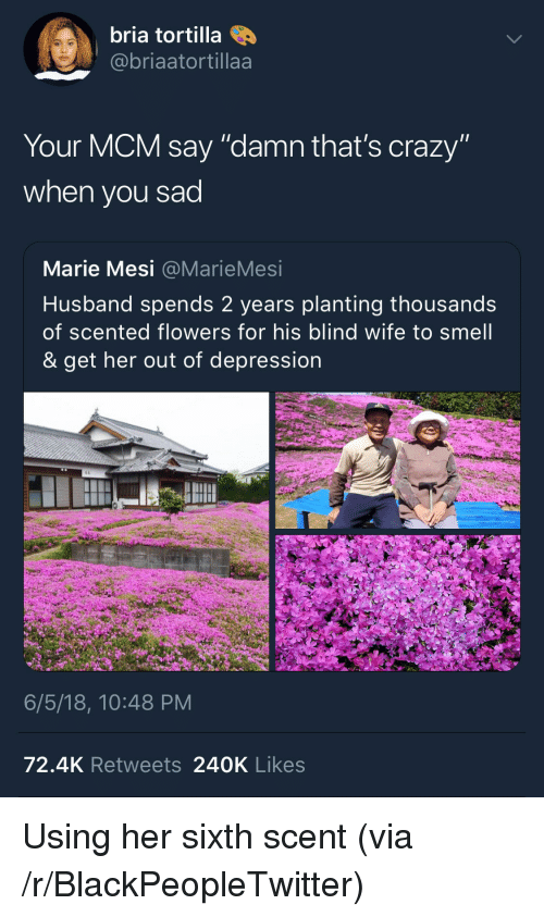 """Blackpeopletwitter, Crazy, and Smell: bria tortilla  @@briaatortillaa  Your MCM say """"damn that's crazy""""  when you sad  Marie Mesi @MarieMesi  Husband spends 2 years planting thousands  of scented flowers for his blind wife to smell  & get her out of depression  6/5/18, 10:48 PM  72.4K Retweets 240K Likes <p>Using her sixth scent (via /r/BlackPeopleTwitter)</p>"""