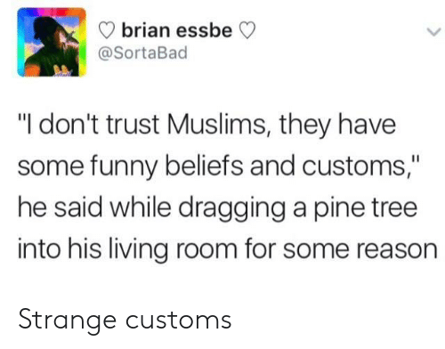 """muslims: brian ess  @SortaBad  beCV  """"I don't trust Muslims, they have  some funny beliefs and customs,""""  he said while dragging a pine tree  into his living room for some reason Strange customs"""