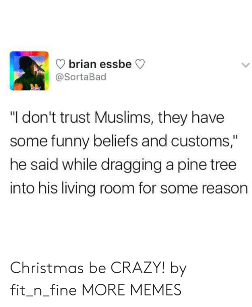 "Fitted: brian essbe  @SortaBad  ""I don't trust Muslims, they have  some funny beliefs and customs,""  he said while dragging a pine tree  into his living room for some reason Christmas be CRAZY! by fit_n_fine MORE MEMES"