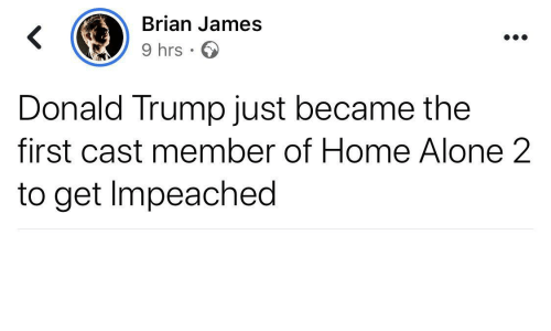 Being Alone, Donald Trump, and Home Alone: Brian James  9 hrs · O  Donald Trump just became the  first cast member of Home Alone 2  to get Impeached