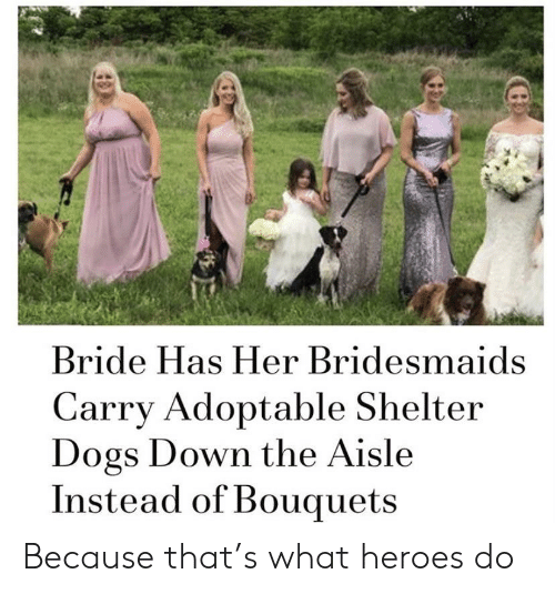 Dogs, Bridesmaids, and Heroes: Bride Has Her Bridesmaids  Carry Adoptable Shelter  Dogs Down the Aisle  Instead of Bouquets Because that's what heroes do