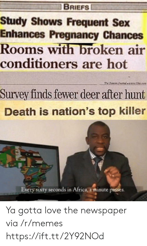 Survey: BRIEFS  Study Shows Frequent Sex  Enhances Pregnancy Chances  Rooms with broken air  conditioners are hot  The Pearm lw.h  Survey finds fewer deer after hunt  Death is nation's top killer  Every sixty seconds in Africa, a minute passes Ya gotta love the newspaper via /r/memes https://ift.tt/2Y92NOd
