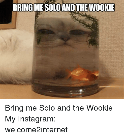 wookies: BRING MESOLOANDTHE Bring me Solo and the Wookie  My Instagram: welcome2internet