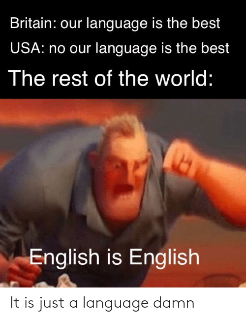 Is Just A: Britain: our language is the best  USA: no our language is the best  The rest of the world:  English is English It is just a language damn