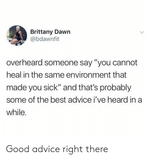 "Advice, Dank, and Best: Brittany Dawn  @bdawnfit  overheard someone say ""you cannot  heal in the same environment that  made you sick"" and that's probably  some of the best advice i've heard in a  while. Good advice right there"