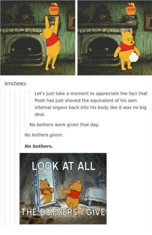 Memes, 🤖, and Looking: brnchewy:  Let's just take a moment to appreciate the fact that  Pooh has just shoved the equivalent of his own  internal organs back into his body like it was no big  deal.  No bothers were given that day.  No bothers given.  No bothers.  LOOK AT ALL  THE BOTHERS GIVE