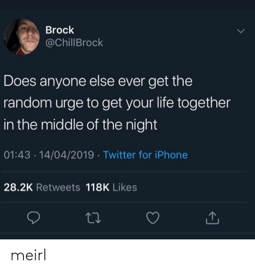 Iphone, Life, and Twitter: Brock  @ChillBrock  Does anyone else ever get the  random urge to get your life together  in the middle of the night  01:43 14/04/2019 Twitter for iPhone  28.2K Retweets 118K Likes meirl