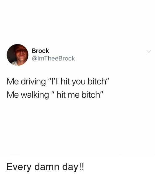 "Bitch, Driving, and Memes: Brock  @lmTheeBrock  Me driving ""'ll hit you bitch""  Me walking "" hit me bitch"" Every damn day!!"