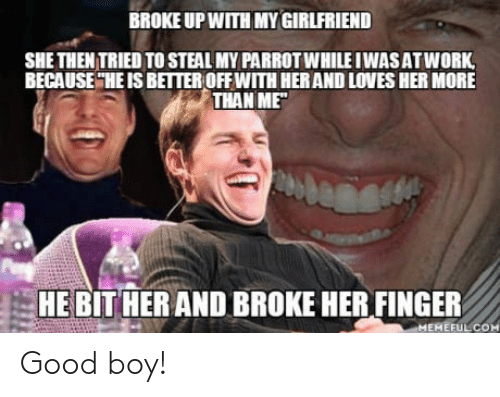 Her Finger: BROKE UP WITH MY GIRLFRIEND  SHE THEN TRIED TO STEAL MY PARROT WHILE IWASATWORK  BECAUSE HE IS BETTEROFF WITH HER AND LOVES HER MORE  THAN ME  HE BIT HER AND BROKE HER FINGER  MEMEFULCOM Good boy!