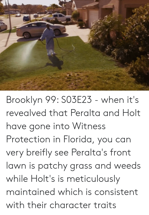 Brooklyn, Florida, and Weeds: Brooklyn 99: S03E23 - when it's revealved that Peralta and Holt have gone into Witness Protection in Florida, you can very breifly see Peralta's front lawn is patchy grass and weeds while Holt's is meticulously maintained which is consistent with their character traits