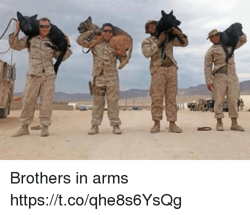 Memes, 🤖, and Arms: Brothers in arms https://t.co/qhe8s6YsQg