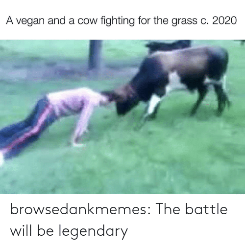 battle: browsedankmemes:  The battle will be legendary