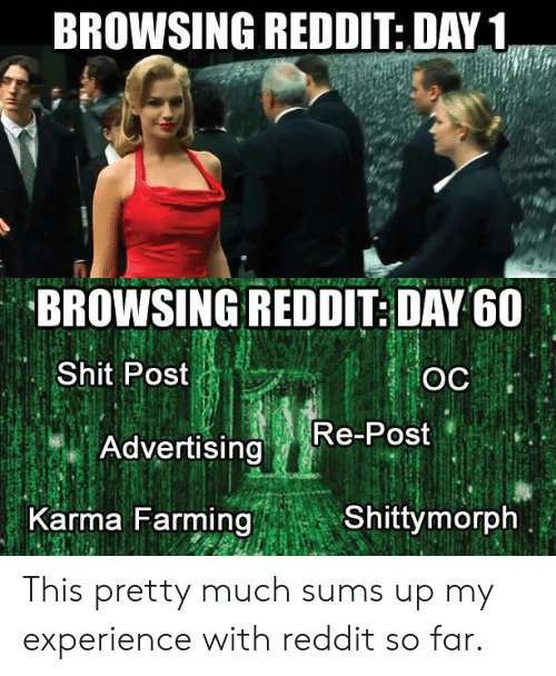 Farming: BROWSING REDDIT: DAY1  BROWSING REDDIT: DAY G0  Shit Post  Re-Post  Advertising  Karma Farming  Shittymorph This pretty much sums up my experience with reddit so far.