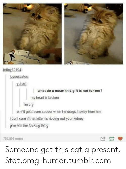 Fucking, Omg, and Tumblr: brttny32194  Loyouscatus  yui-art  what do u mean this gift is not for me?  my heart is broken  I'm cry  omf it gets even sadder wihen he drags it away from him  dont care if that kitten is ripping out your kidney  give him the fucking thing  755,506 notes Someone get this cat a present. Stat.omg-humor.tumblr.com
