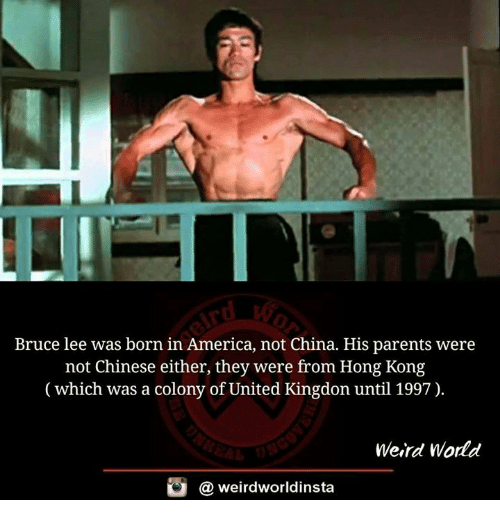 America, Memes, and Parents: Bruce lee was born in America, not China. His parents were  not Chinese either, they were from Hong Kong  (which was a colony of United Kingdon until 1997).  Weird World  weirdworldinsta  a