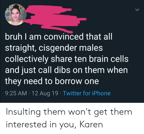 Bruh, Iphone, and Tumblr: bruh I am convinced that all  straight, cisgender males  collectively share ten brain cells  and just call dibs on them when  they need to borrow one  9:25 AM 12 Aug 19 Twitter for iPhone Insulting them won't get them interested in you, Karen