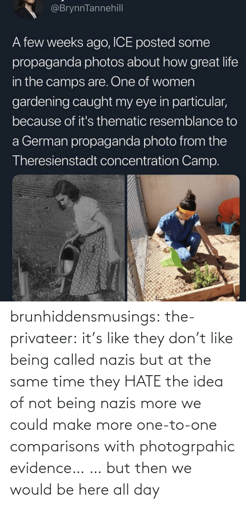 Not Being: brunhiddensmusings:  the-privateer: it's like they don't like being called nazis but at the same time they HATE the idea of not being nazis more we could make more one-to-one comparisons with photogrpahic evidence… … but then we would be here all day