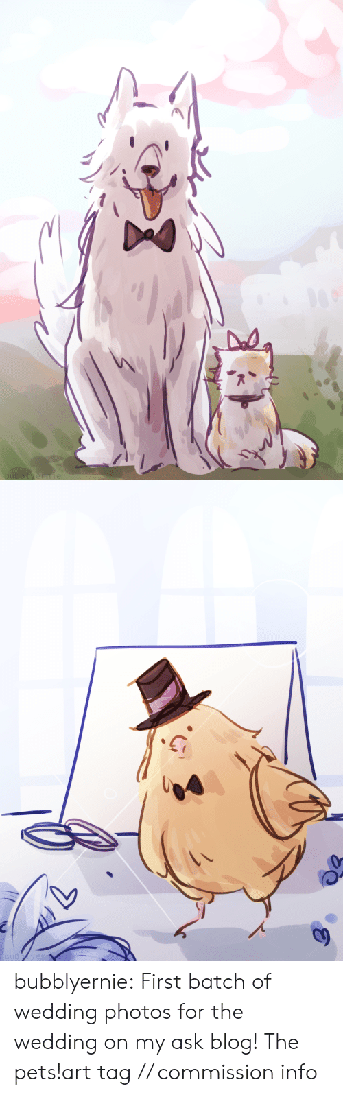 Target, Tumblr, and Blog: bubblyernie   bubbyern bubblyernie:  First batch of wedding photos for the wedding on my ask blog! The pets!art tag // commission info