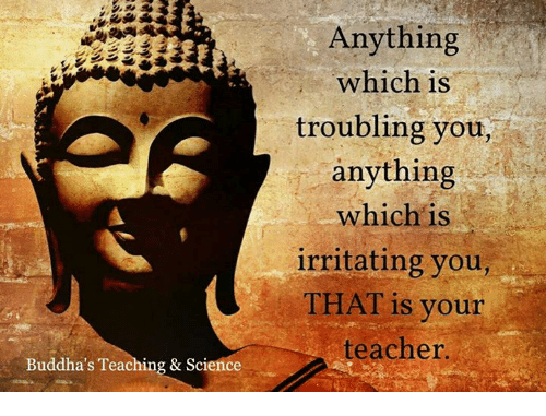 Memes, Teacher, and Science: Buddha's Teaching & Science  Anything  which is  troubling you,  anything  which is  irritating you,  THAT is your  teacher.