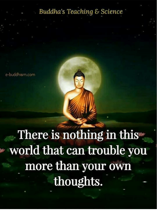 Memes, Science, and World: Buddha's Teaching & Science  e-buddhism com  There is nothing in this  world that can trouble you  more than your own  thoughts