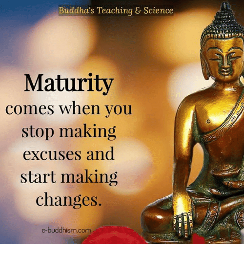 Memes, Science, and Buddhism: Buddha's Teaching & Science  Maturity  comes when you  A  stop making  excuses and  start making  changes  e-buddhism com