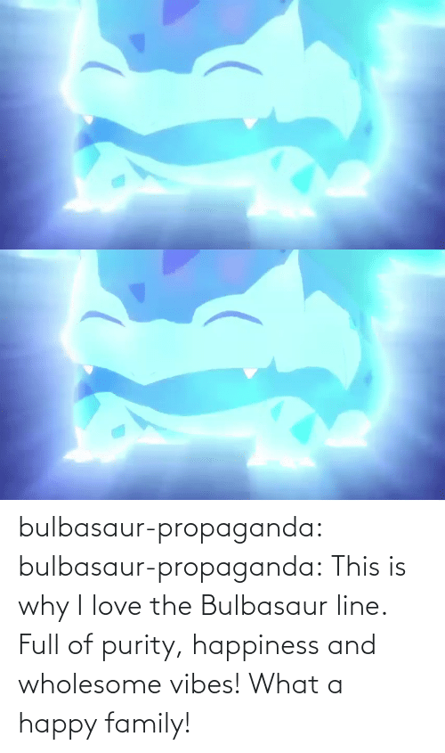 bulbasaur: bulbasaur-propaganda:  bulbasaur-propaganda:   This is why I love the Bulbasaur line. Full of purity, happiness and wholesome vibes!    What a happy family!