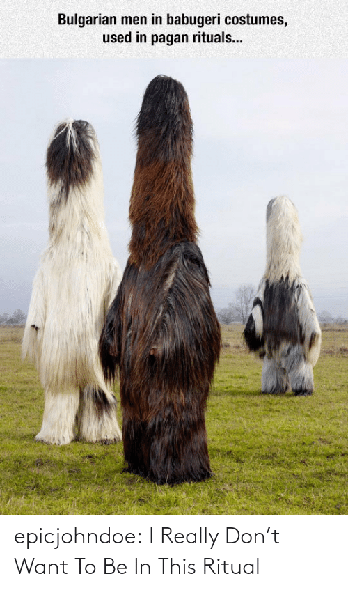 Tumblr, Blog, and Com: Bulgarian men in babugeri costumes,  used in pagan rituals... epicjohndoe:  I Really Don't Want To Be In This Ritual