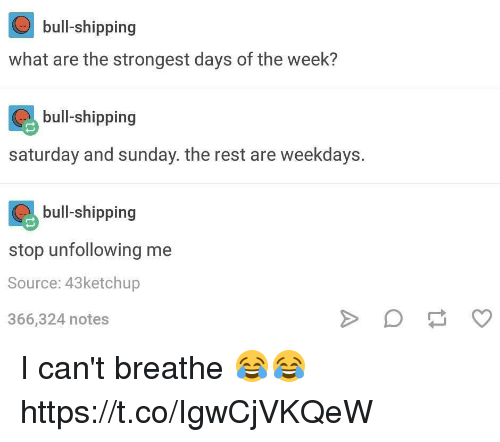 Sunday, What Ares, and Rest: bull-shipping  what are the strongest days of the week?  bull shipping  bull-shipping  saturday and sunday. the rest are weekdays.  bull shipping  bull-shipping  stop unfollowing me  Source: 43ketchup  366,324 notes I can't breathe 😂😂 https://t.co/IgwCjVKQeW