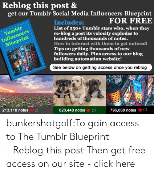 Access: bunkershotgolf:To gain access to The Tumblr Blueprint - Reblog this post Then get free access on our site - click here